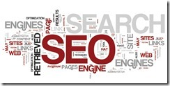 SEO? No Thank You! I'll Do it My Way